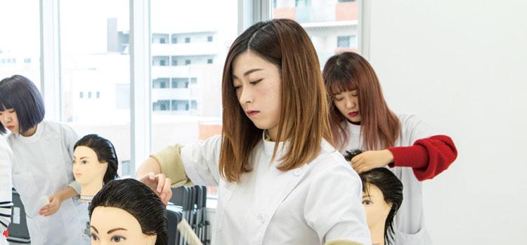 美容師免許プラン